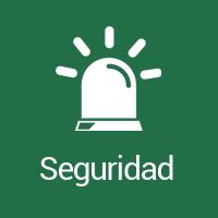 icono_seguridad